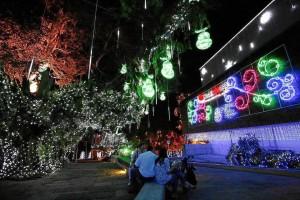 Entre los atractivos de Navidad del Parque del Agua está un árbol de 24 metros de altura.
