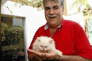 Jairo Rodríguez Ferreira se dedica a criar y vender gatos persas.