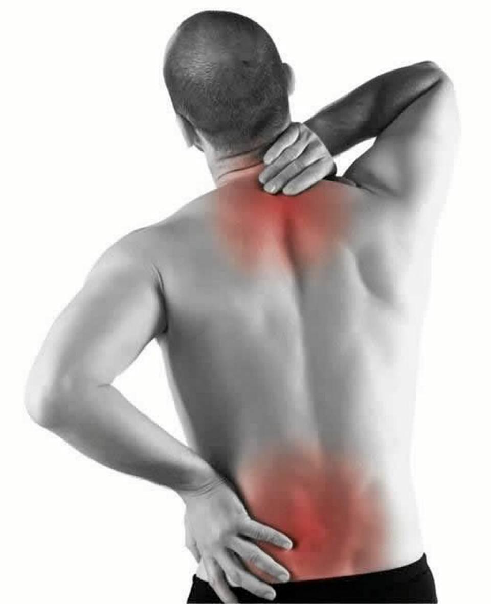Bolyat los apéndices dan en la espalda