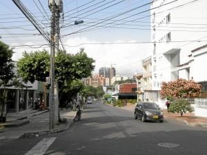 """""""En la calle 48 hay varios establecimientos comer-ciales autorizados por la Alcaldía de Bucaraman-ga, lo que cataloga esta zona como comercial"""", dijo el dueño del local que vende frutas y verduras."""