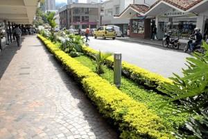 El Gobierno Municipal construirá jardines, antejardines y reparará algunos andenes de Cabecera.