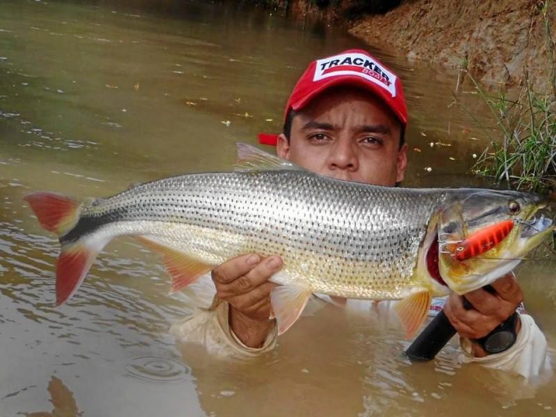 En el río Magdalena, con una picuda de 6 libras y media.