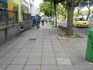 En este punto de carrera 33 entre calles 48 y 51 las raíces del árbol están levantando las losas y el borde del andén.
