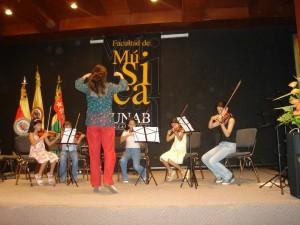 Los interesados en participar en el Festival Instrumentos de Arco de la Unab pueden inscribirse desde ya.