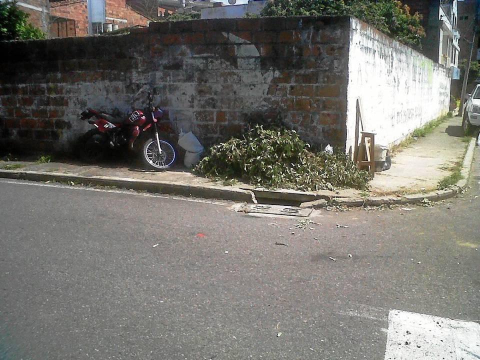 Las ramas, residuos de podas, también hacen parte del panorama de desaseo.