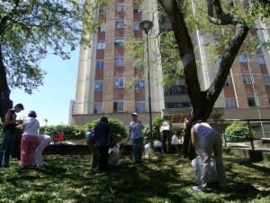 La JAC quiere seguir embelleciendo el barrio que está ubicado entre las calles 32 y 42 y carreras 27 y 33. - Jaime Del Río Quiroga / GENTE DE CABECERA