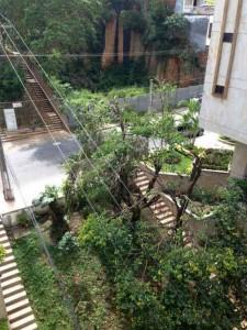 El caso ocurrió en el barrio Cabecera. - Suministrada /GENTE DE CABECERA