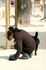 La persona que hizo la denuncia invita a la comunidad a recoger el excremento de sus mascotas. - Tomada de Internet /GENTE DE CABECERA