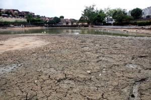 Antes de volver a llenar el lago con las aguas lluvias que lo surten y la de la quebrada vecina a Jardines Las Colinas, se debe limpiar muy bien el terreno, retirar escombros y basuras.