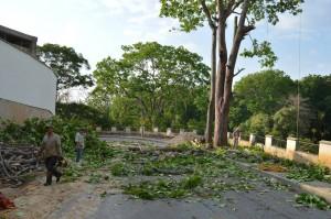 Este es el panorama en un tramo de la vía al cementerio Las Colinas, desde la carretera antigua.