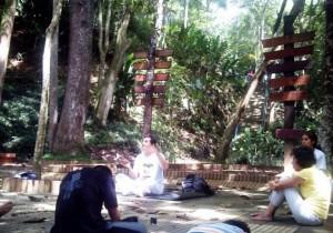Retornan las clases de yoga al parque La Flora, los domingos. - Suministrada /GENTE DE CABECERA