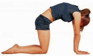 Esta es la postura del gato que ayuda a relajar y estirar los músculos de la espalda; va de la mano con la respiración.