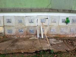 Algunos osarios se han visto seriamente afectados por el crecimiento de las raíces. - Suministradas / GENTE DE CABECERA