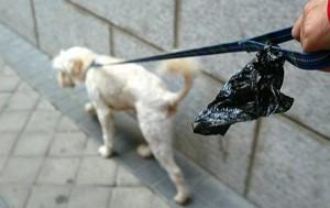 Collar y bolsa en mano, fácil de llevar, como se ve en la imagen. Esta es la invitación a quienes sacan a pasear sus mascotas. - Tomada de www.mundoperros.es / GENTE DE CABECERA