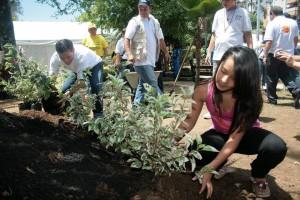 Este es un ejemplo de las fotos con la que se puede participar en el concurso entre los barrios más ambientalistas. - Archivo /GENTE DE CABECERA