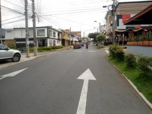 En la carrera 36, como en muchas otras vías de la ciudad, hace falta pintar las líneas laterales. - Tatiana Celis / GENTE DE CABECERA