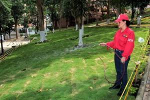 El riego del pasto aporta al embellecimiento del parque Los Sarrapios
