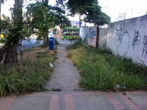 El lote de la calle 36 con carrera 33 está en total abandono. - Suministrada / GENTE DE CABECERA