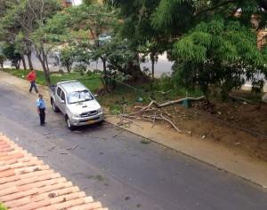En la imagen se ve el vehículo que quedó entre las ramas. - Suministrada / GENTE DE CABECERA