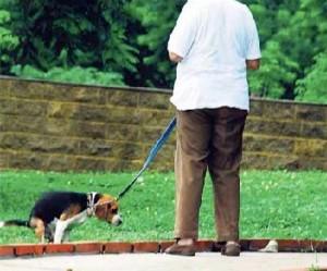 Una vez más los vecinos de altos de Pan de Azúcar piden recoger los excrementos a los amos de mascotas. - Tomada de Internet / GENTE DE CABECERA