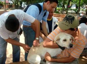 En algunos parques del sector habrá jornada de vacunación de mascotas. - Archivo / GENTE DE CABECERA