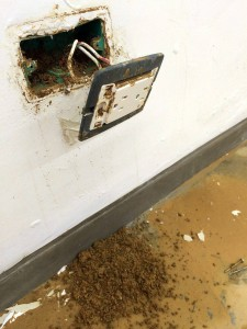 Los vecinos se preguntan quién responde por estos daños del 31 de octubre, cuando los sifones y hasta conectores de energía se rebosaron.