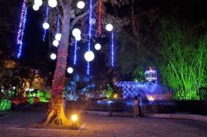 Muchas zonas verdes del parque fueron iluminadas para darle así sentido a la historia de la hada Cristal.