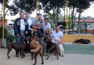 Estas son algunas de las mascotas queridas por los residentes de Pan de Azúcar y barrios aledaños. - Suministrada / GENTE DE CABECERA