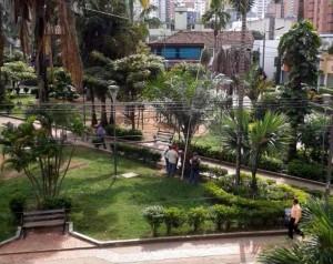 Una de las preocupaciones de la denunciante es que talen las palmas, símbolo de este parque. - Suministrada/ GENTE DE CABECERA