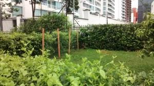 En la foto se aprecia la cerca de madera y alambre puesta por algún vecino. - Suministrada / GENTE DE CABECERA