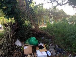 En un lote de Pan de Azúcar algunas personas dejan abandonada basuras