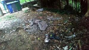 Al final de las escaleras entre Altos del Jardín y Pan de Azúcar hay un foco de basuras. - Suministrada / GENTE DE CABECERA