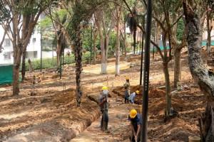 Los trabajos de remodelación del parque Los Sarrapios iniciaron en la primera semana de abril. - Javier Gutiérrez / GENTE DE CABECERA