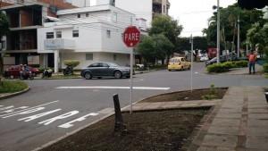 """""""Aunque el árbol no era muy grande y frondoso, sí le aportaba al paisaje urbano del sector"""", expresó un habitante de la zona. - Suministrada / GENTE DE CABECERA"""