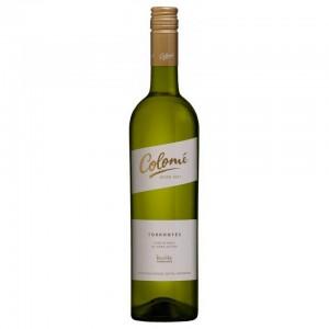 Para leer un buen libro un vino blanco torrontés.