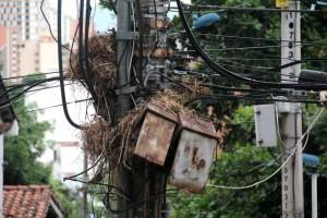 Los nidos de pájaros y el exceso de cables afean el panorama de las calles de Cabecera. - Javier Gutiérrez / GENTE DE CABECERA