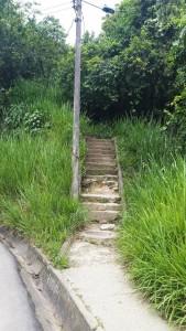 Estas son las escaleras que comunican a Los Cedros y Pan de Azúcar. - Suministrada / GENTE DE CABECERA