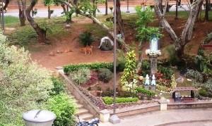 """""""Se nota que este indigente ya montó una especie de cambuche en el parque"""", mencionan vecinos del sector. - Suministrada / GENTE DE CABECERA"""