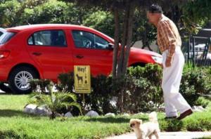 Recuerde educar a su mascota y ser un amo responsable. Su perro no puede extralimitar el área de su casa.