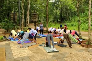 Aquí, los participantes realizando la postura del perro, bajo la dirección de la maestra en yoga Nitya Siddha Devi Dasi