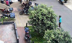 Debido al flujo de motos, los vecinos sufren congestión vehicular, contaminación auditiva e invasión del espacio público. - Suministrada/GENTE DE CABECERA