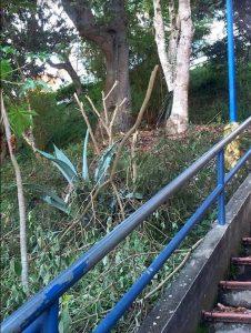 En la foto se muestra parte del daño recientemente ocasionado. - Suministrada/GENTE DE CABECERA