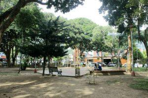 Aseo, desyerbe y mantenimiento constante le han cambiado el 'semblante' al Parque de Conucos.  - Fabián Hernández/GENTE DE CABECERA