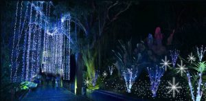 Un maravilloso espectáculo de luces, árboles y adornos navideños llega al Parque del Agua