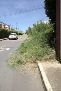 La falta de mantenimiento de los lotes ya está afectando la vía pública. - Javier Gutiérrez/GENTE DE CABECERA