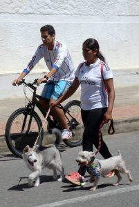 La calle 36 no estará incluida en la recreovía, para evitar problemas de movilidad. - Archivo/GENTE DE CABECERA