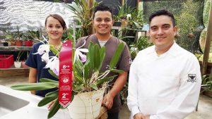 Brassavola nodosa x Laelia purpurata obtuvo el segundo lugar en la categoría al mejor híbrido. - Suministrada/GENTE DE CABECERA
