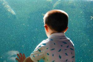 Consulte las diferentes opciones para que sus hijos aprovechen estas vacaciones. - Banco de imágenes/GENTE DE CABECERA