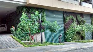 Este conjunto residencial, ubicado en la calle 51 con carrera 39, también da el buen ejemplo con su jardín vertical. - Suministrada/GENTE DE CABECERA