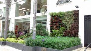 Los jardines verticales son una interesante apuesta que se ve cada vez más en el sector. Un ejemplo es la sede de la Cámara de Comercio en Cabecera. - Suministrada/GENTE DE CABECERA